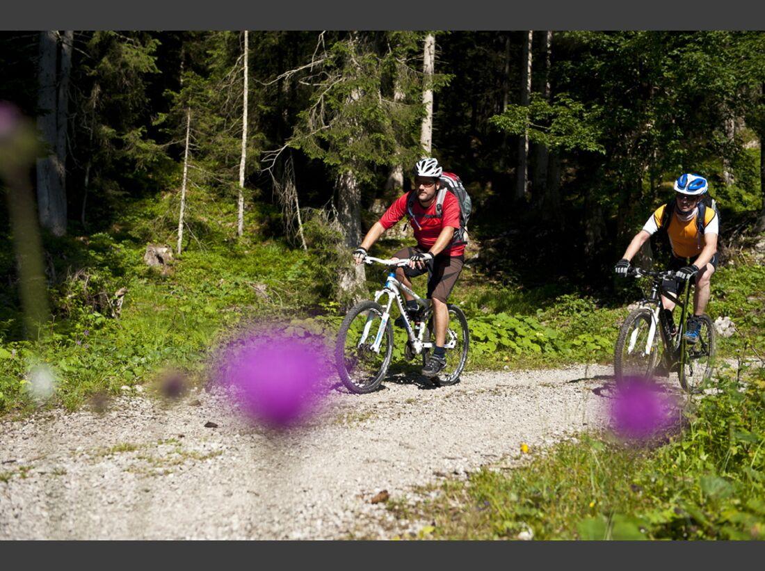 OD 0612 Alpencross MTB MS_BEN8643 (jpg)