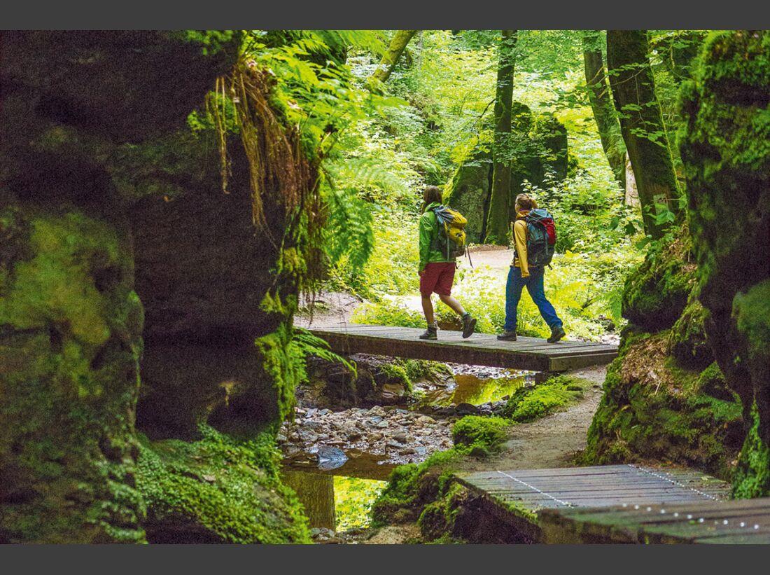 OD-0714-Luxemburg-Mullerthal-Trail-7