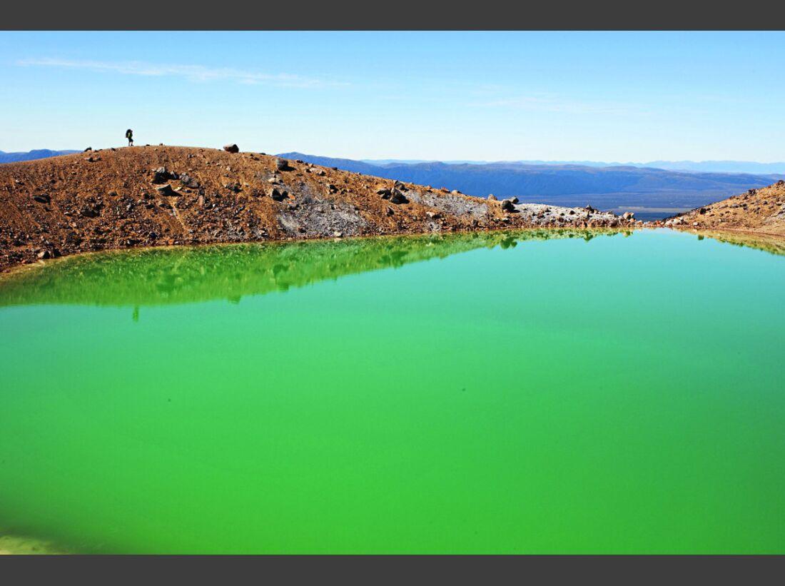 OD-1112-Reise-Neuseeland-Te Araroa-9d (jpg)