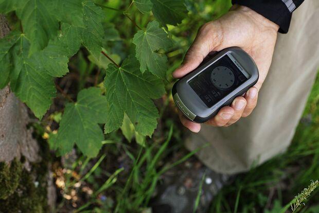 OD 2011 GPS Test Garmin Oregon Wald (jpg)