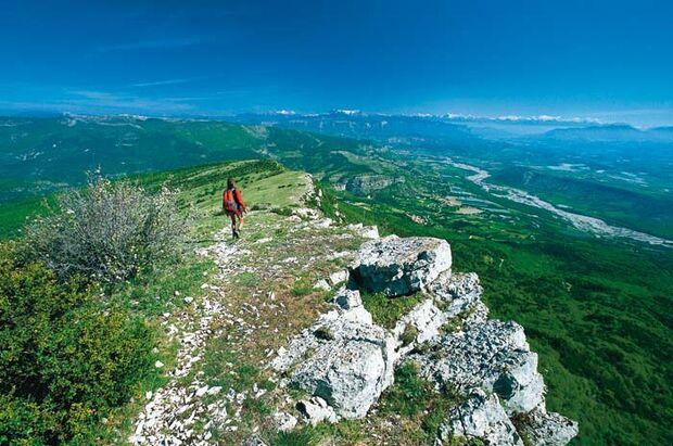 OD Haute Provence