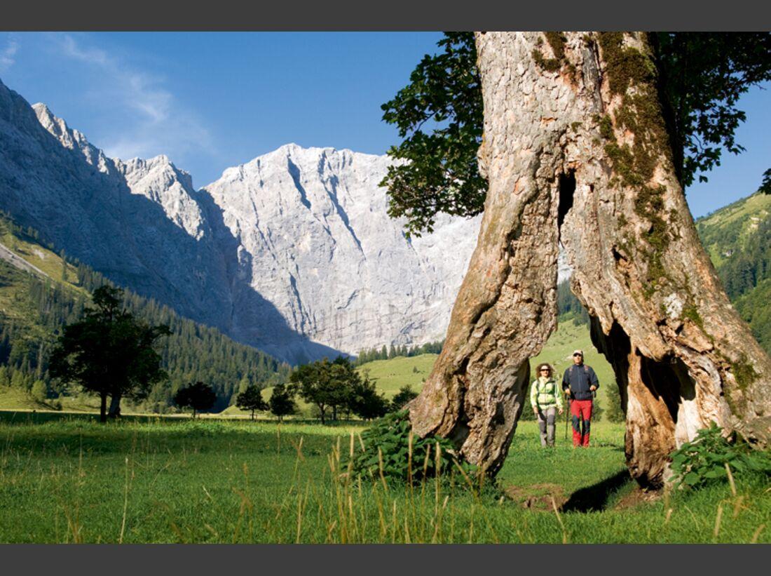 OD Karwendel Großer Ahornboden