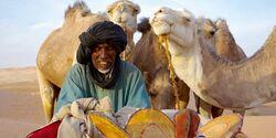 OD Orient - Lybien