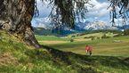 Wandergenuss in Südtirol - Seiser Alm 7