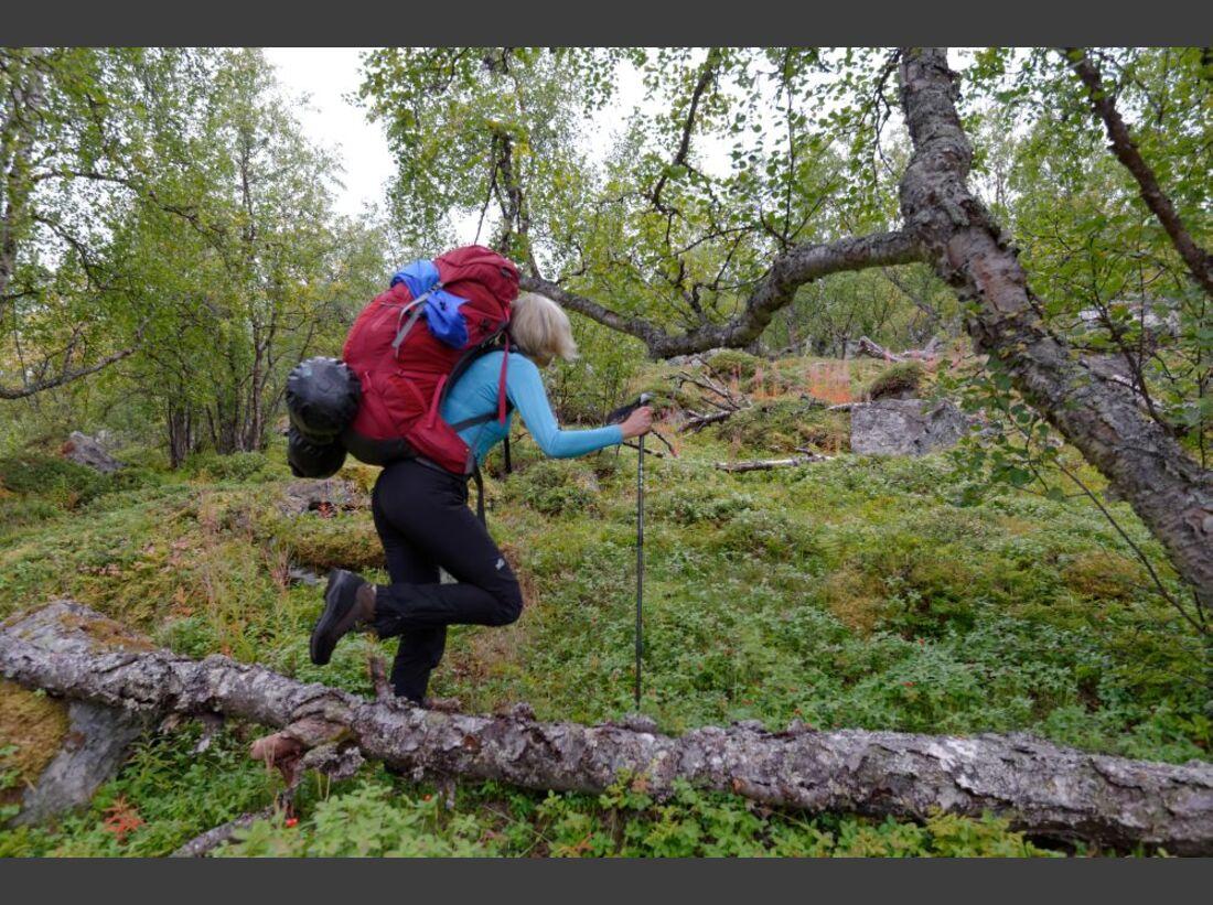 Wildnis-Trekking im Sarek 5