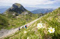 od-0417-wandern-rofangebirge-tirol-3 (jpg)