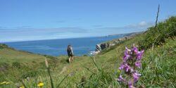 od-2014-england-South West Coast Path_03 (jpg)